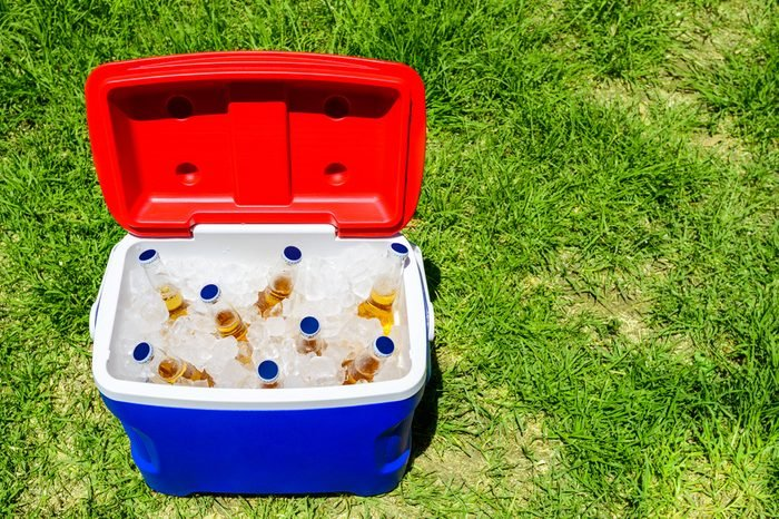 Picnic cooler box with bottles of beer in ice on grass during Australia Day celebration