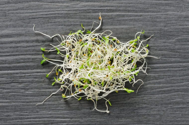 Heap of sprouted alfalfa seeds on a dsrk stone background