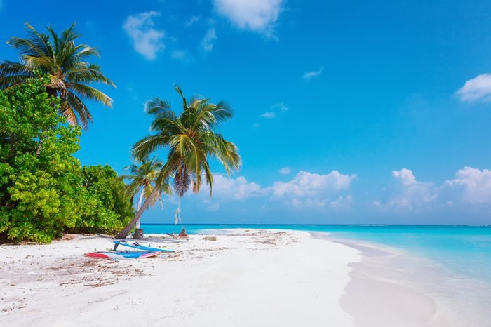Scenic view of Wild idyllic Beach at Maldives island Fulhadhoo with white sandy beach and sea and curve palm