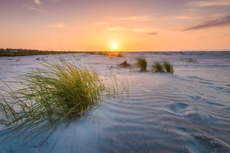 Beautiful sunrise over the sand dunes on Fripp Island, South Carolina.