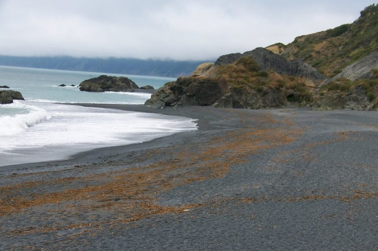 Black Sand Beach in Northern California
