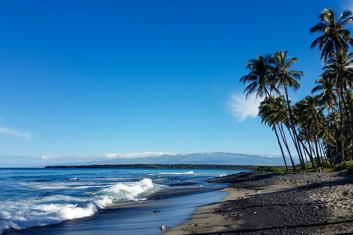 Beach with black lava sand and palm trees on the Big Island of Hawaii