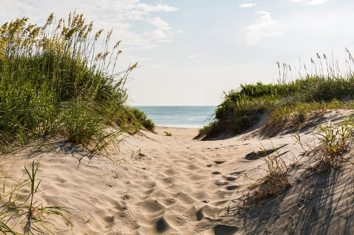 Sandy pathway to Coquina Beach on the Outer Banks in North Carolina at Cape Hatteras National Seashore.