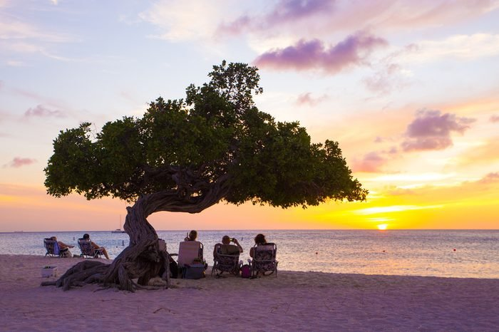 EAGLE BEACH, ARUBA - MARCH 15, 2017: View of Eagle Beach, Aruba at sunset with Divi Divi tree and tourists.