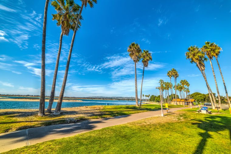 Palm trees in Mission Bay. San Diego, California