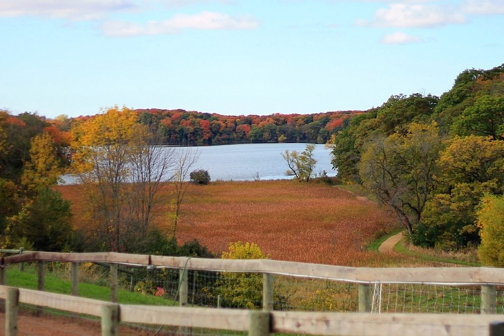 A landscape scene of autumn foliage. Orange,red,yellow,green colors. Wooden fence in front of big lake, trees and sky in background. Big pasture in front of lake.