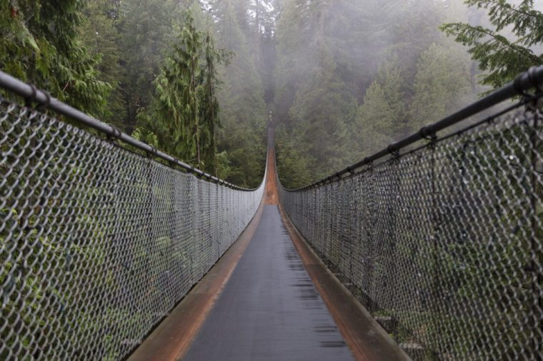 Capilano Suspension Bridge. Vancouver British Columbia Canada. Nature. Evergreen.