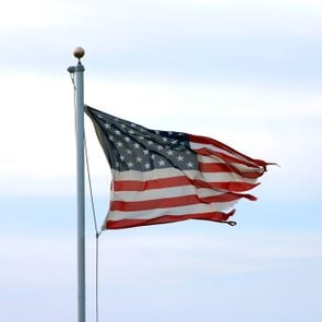 A much tattered but unbowed American Flag