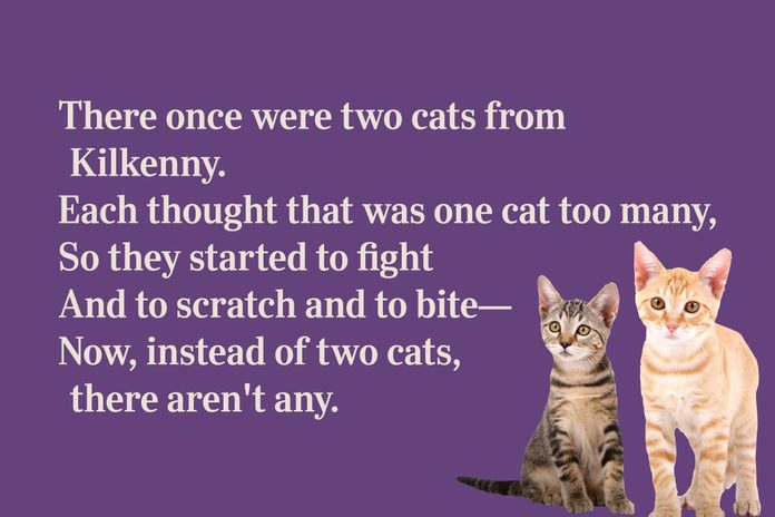 Two cats limerick for kid