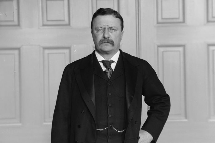 Theodore ROOSEVELT 1858-1919, 26th President of the United States, photographed c. 1902