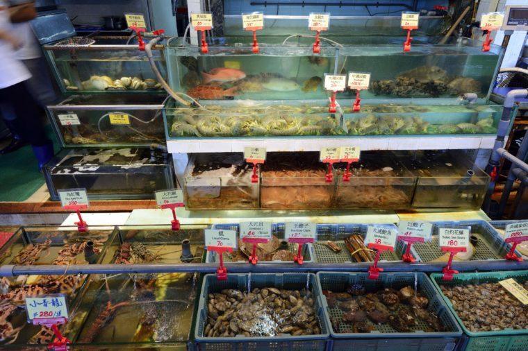 Fresh, live marine animals and fish, seafood restaurant, Lamma Island, Hong Kong, China