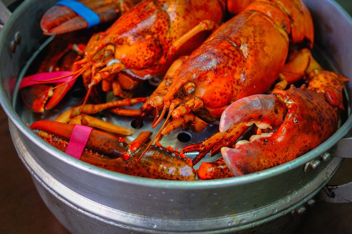 Close up of Maine Lobster in the iron steamer on a dark wooden table