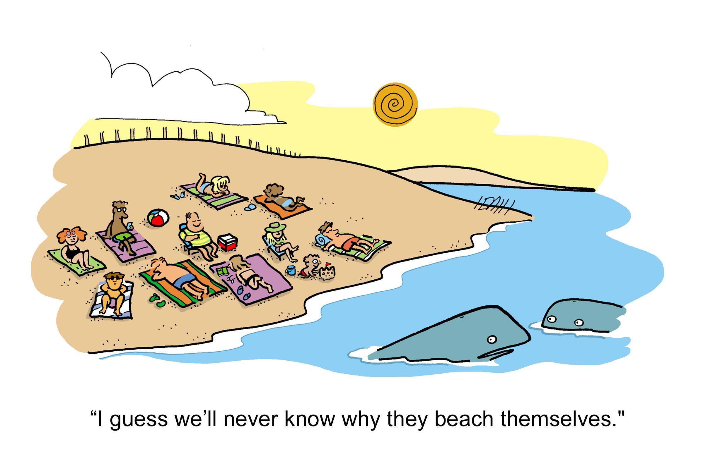 summer cartoons