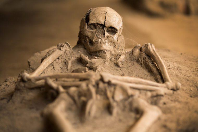 human skeleton remains