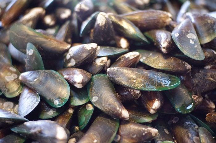 more fresh shellfish seafood