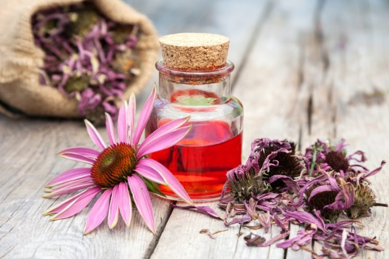 essential oil in glass bottle and coneflower on wooden rustic table, bag with herbs, herbal medicine