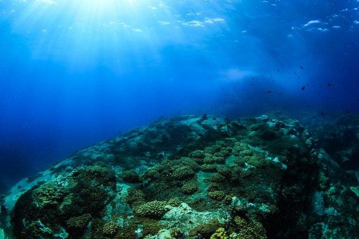 losin island , Underwater Volcano