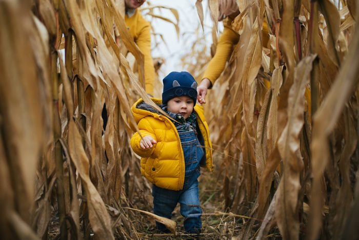 Family look clothe child walking through corn field