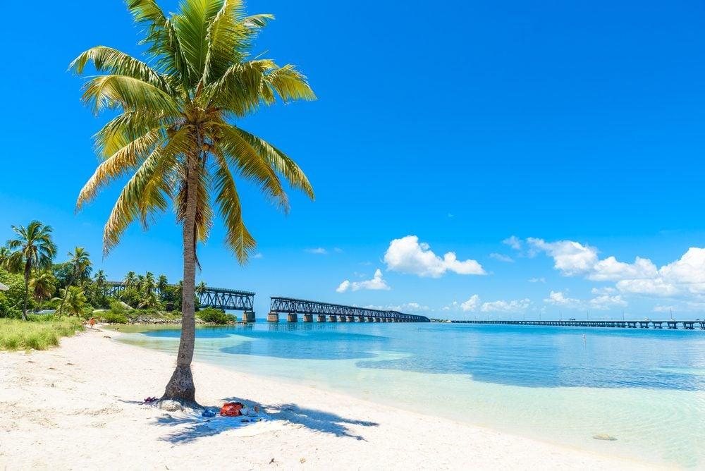 Bahia Honda State Park - Calusa Beach, Florida Keys - tropical coast with paradise beaches - USA