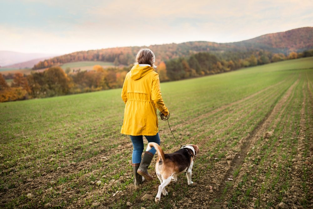 Active senior woman with dog on a walk in a beautiful autumn nature. Rear view.