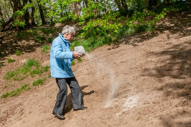 VEGHEL, HOLLAND - MAY 9, 2009: Woman strewing the ashes of a loved one in a forest