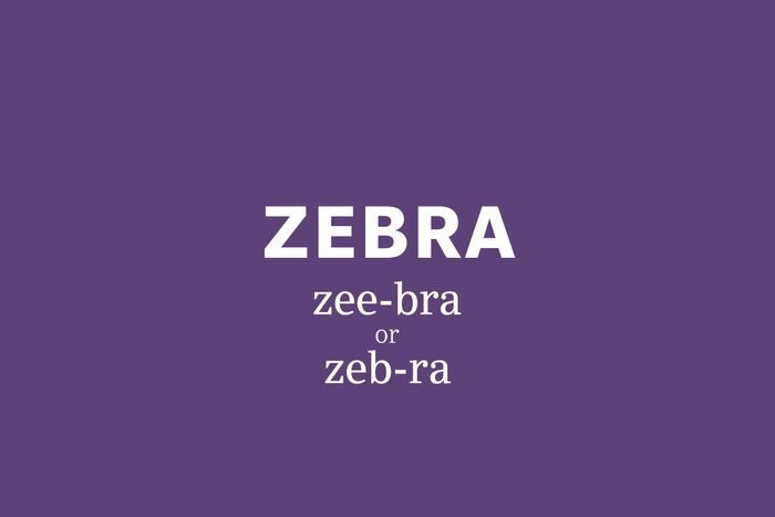 zebra pronunciation