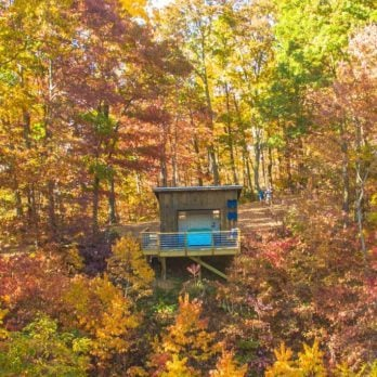14 Best Airbnbs to Book for Fall Foliage Views