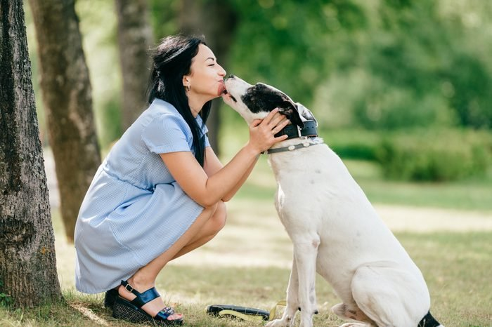 Young beautiful brunette cheerful girl in blue dress have fun and playing with her male white dog outdoor at nature. Nice looking woman loves kind pet. Happy best friends hugs. Domestiic animal smile