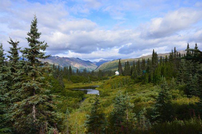 remote bush cabin