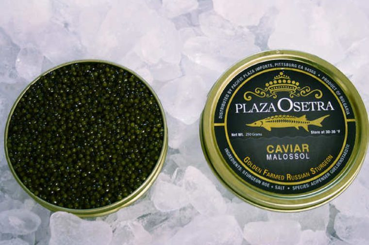 Plaza Osetra Golden Farmed Sturgeon Caviar