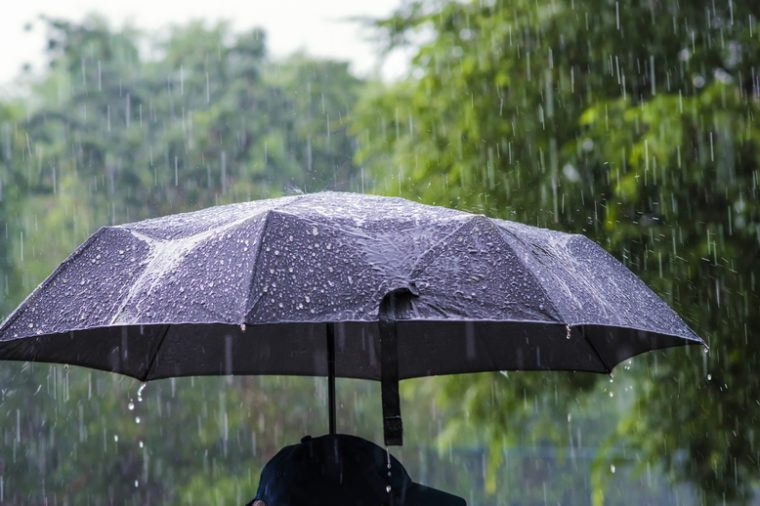A person with an umbrella in the rain.