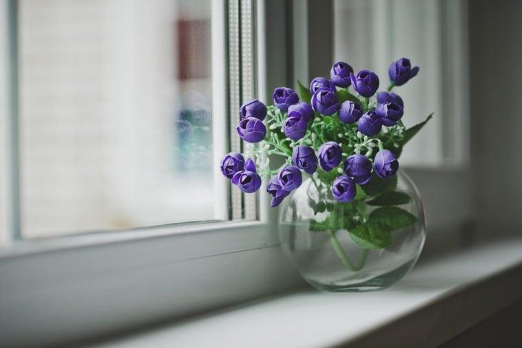 A vase of blue flowers on the windowsill.
