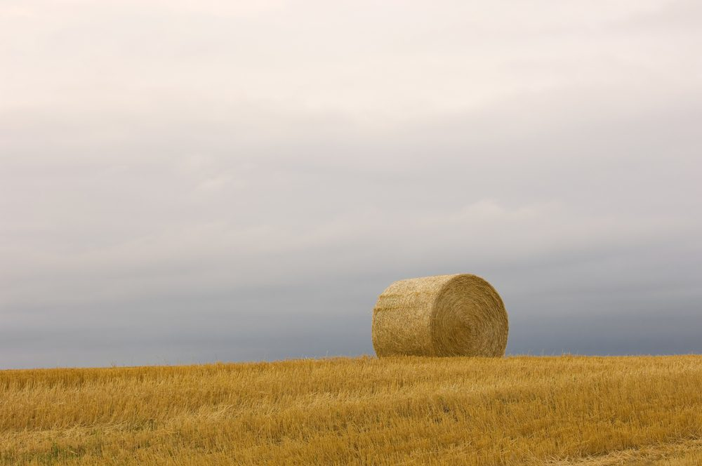 Lonely Bale of Hay near Dickinson, North Dakota