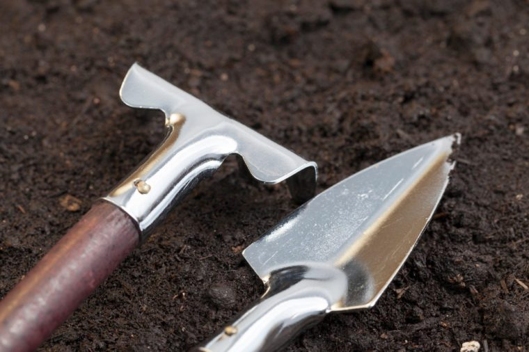 small metal shovels and rakes for tillage in vases, flowerpots, beds