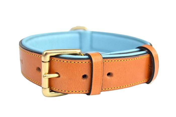 Soft Touch Collars Leather Padded Dog Collar