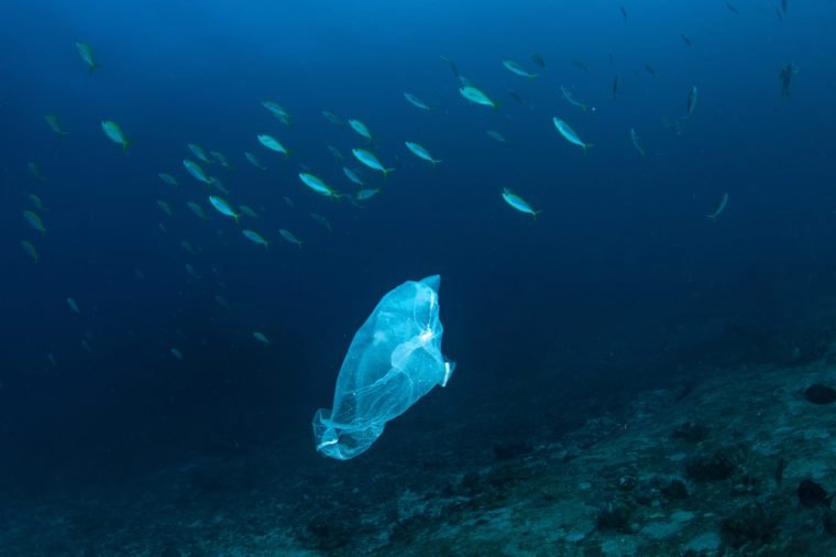 Facts That Will Make You Stop Using Plastic | Reader's Digest