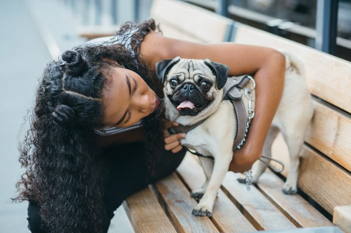 African-american curly women hugging and kissing her pug dog while sitting on the bench. Them playful and happiness.