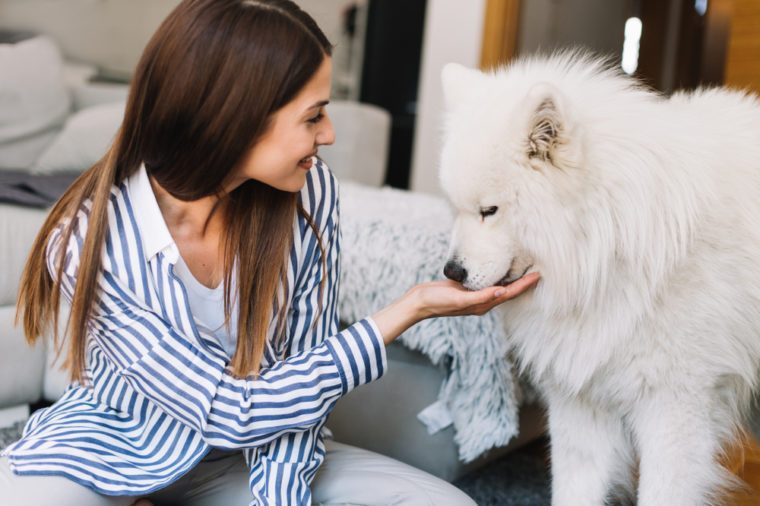 Cute girl petting her dog.Beautiful girl having fun with her dog and enjoying herself.Girl and her dog having at home.