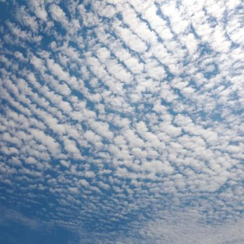 Knowing These 6 Types of Clouds Can Help You Predict the Weather