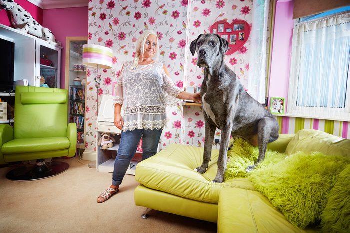 Freddy - Tallest Dog