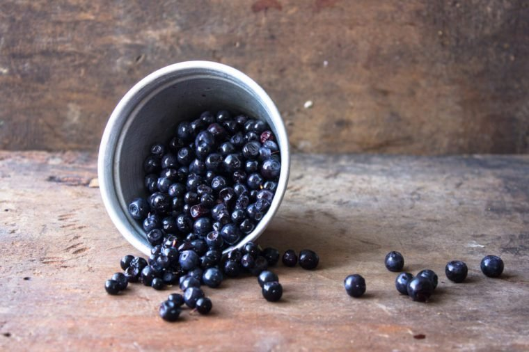 little wild blueberry in cup