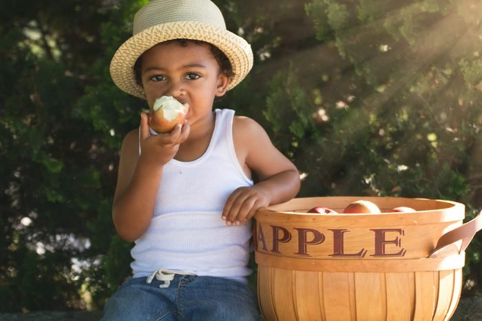 A young country boy is eating an apple on an apple orchard or farm