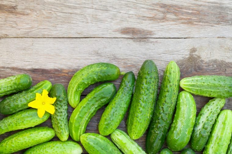Ripe cucumbers on wooden garden table. Top view with copy space