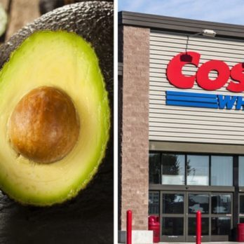 Here's Why Costco's Avocados Last Longer Than Others