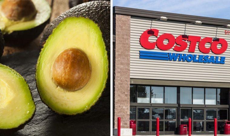 avocado and costco