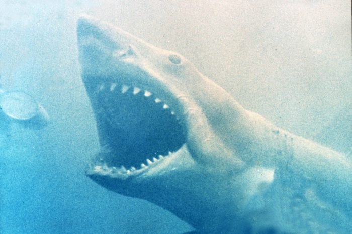 Jaws - 1975