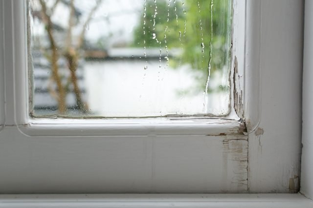 Leaking wooden window - water running down the inside of traditional single glazed timber window frame causing damage