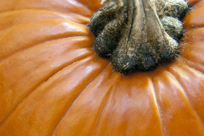 a close up of a bright orange pumpkin showing stem