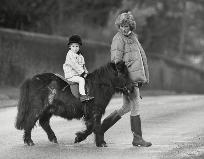 Prince Harry Getting An Early Introduction To Horse Riding