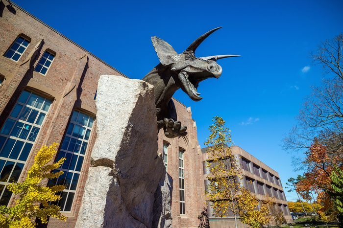 New Haven - OCTOBER 30: Yale Peabody Museum of Natural History in downtown New Haven CT, USA on October 30, 2015